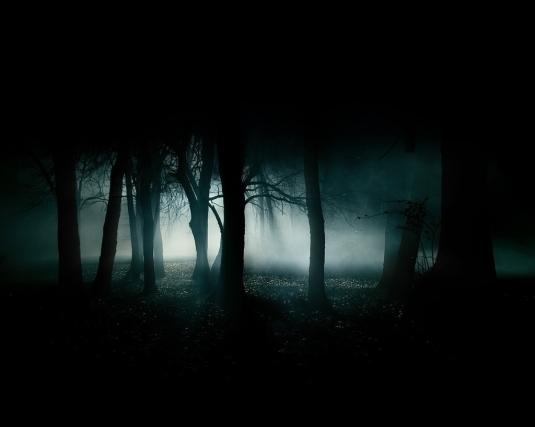 Villain forest